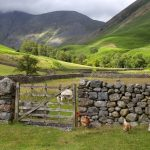VisitEngland launches domestic tourism campaign to boost staycations