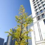 Oakwood Premier Tokyo opens with barrel-breaking ceremony