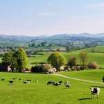 Rural tourism in England inquiry launched