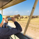 Africa is looking for solutions, with Covid crippling its nature tourism