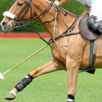Cheval Residences celebrates its fourth year of Ham Polo in Richmond